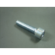 Screw M6x25 Allen key galvanized