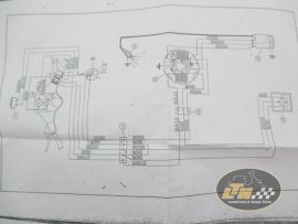 Wiring loomwithout blinkers Vespa PK50